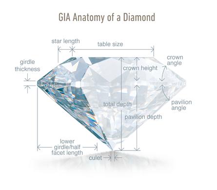 GIA Anatomy 2